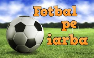 FEG zona agrement fotbal pe iarba